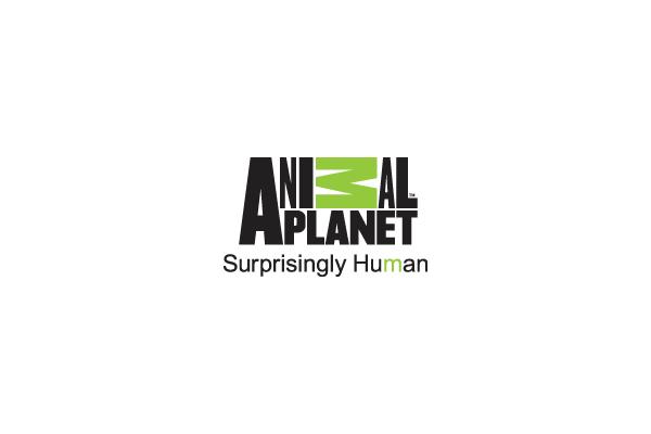 Animal_planetoe