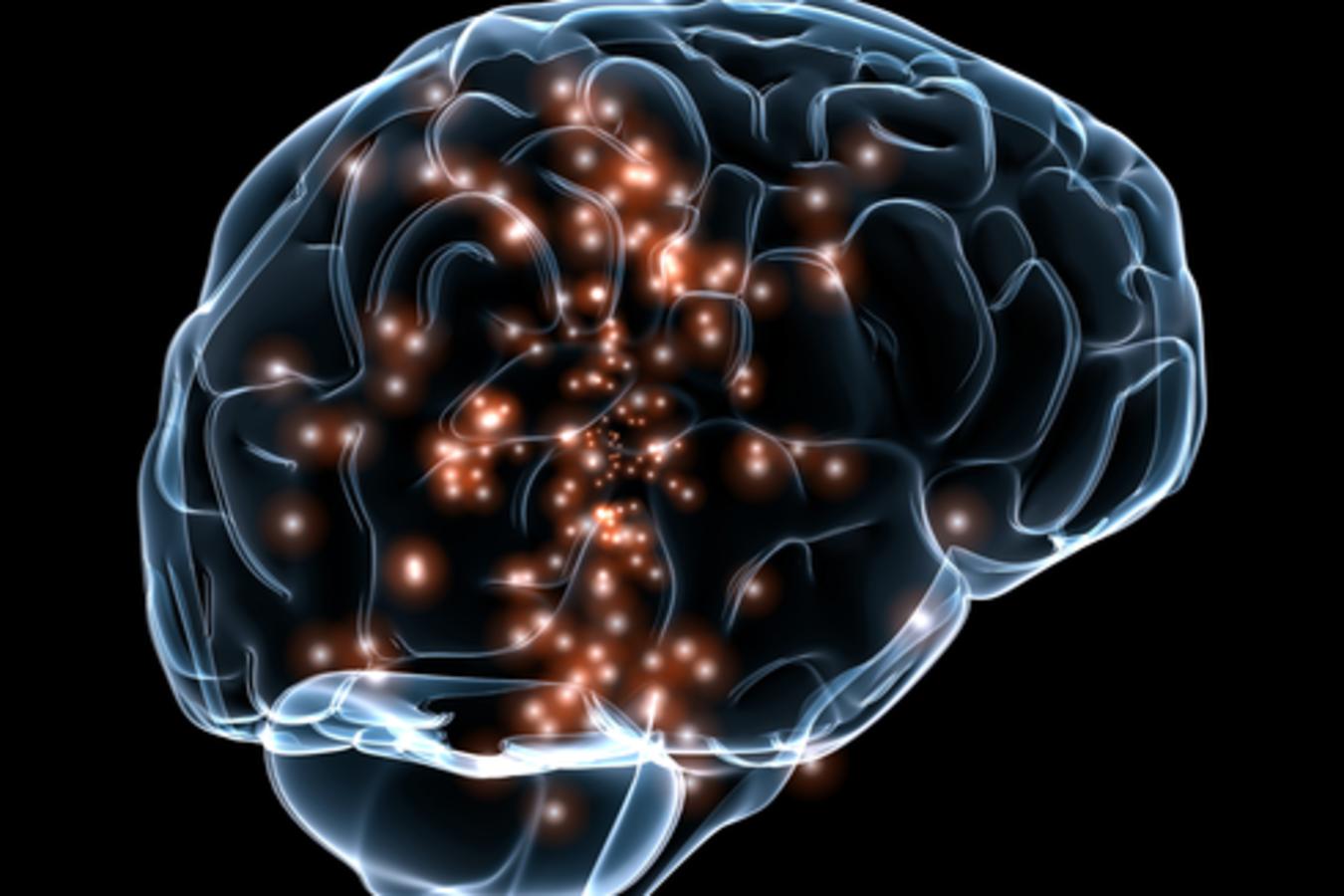 neuro Gallery